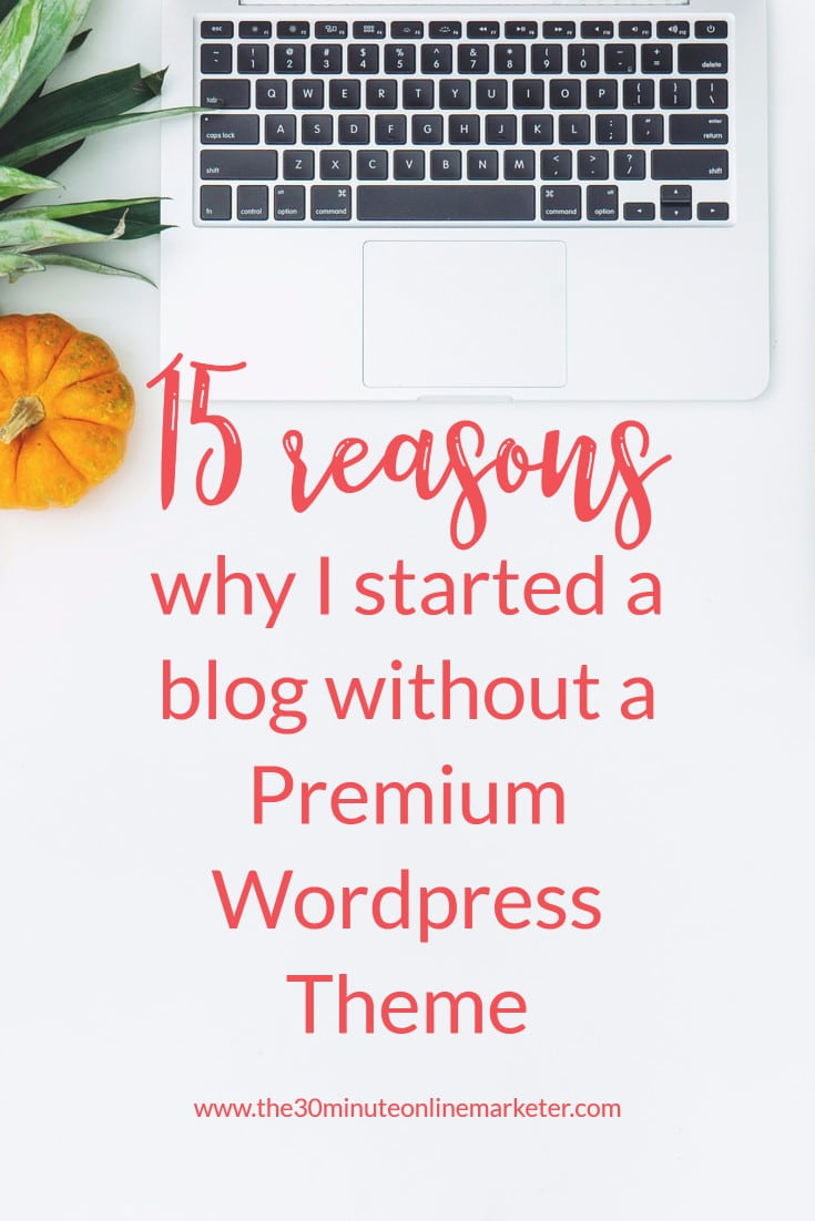 15 reasons why I started a blog without a Premium WordPress Theme