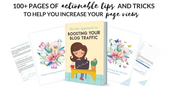Blog Traffic Book by The She Approach