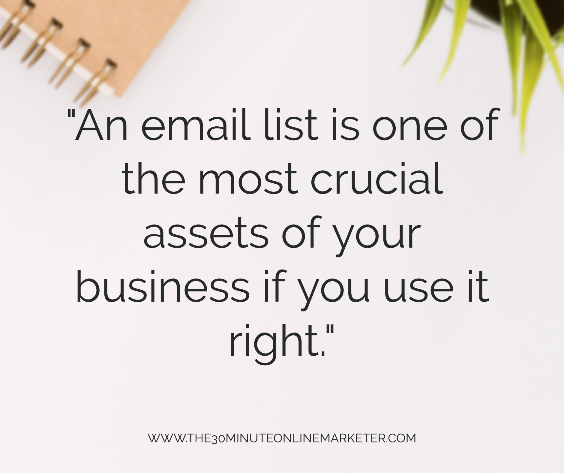 An email list is one of the most crucial assets of your business if you use it right