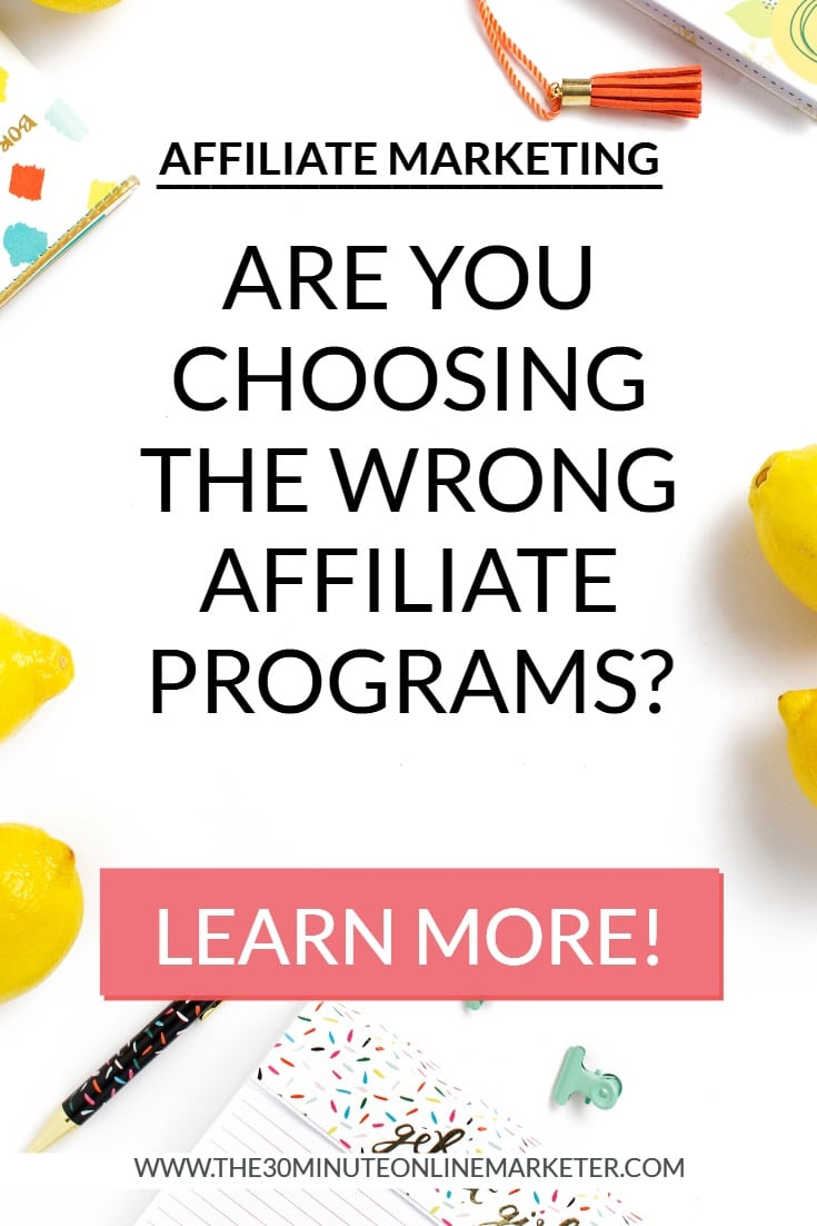 Learn how to choose the best and most profitable affiliate programs for your blog in Shareasale
